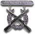 Expert Rifle Badge